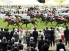 Outback Traveller powers to Wokingham Stakes glory