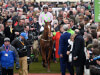 Annie Power and Faugheen star in 28 for Champion Hurdle