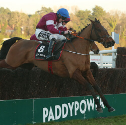 Outlander and Don Poli on course for Cheltenham