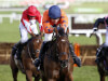 Champion Hurdle entry for Moon Racer but Supreme the 'logical race'