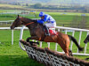 Barry Murphy has Cheltenham Festival in mind for Pairofbrowneyes