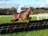 Chateau Conti has Supreme goal at Cheltenham Festival