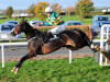 Jezki back on road to Cheltenham with Navan return