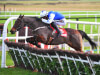 Airlie Beach on course for Cheltenham Festival assignment