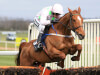 Annie Power ruled out of the Cheltenham Festival by leg injury