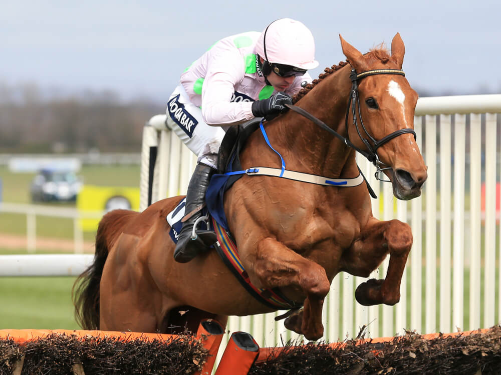 Annie Power ruled out of the Cheltenham Festival with leg injury