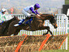 Mark Bradstock has Cheltenham Festival in mind for Flintham