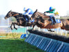 Kemboy team set sights on Cheltenham Festival trip