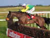 Harrington waiting on Sizing John's Gold run before selecting Festival target