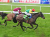 Irish Gold Cup glory for Sizing John