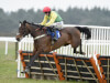 Cheltenham poser remains for Colin Tizzard as Finian's Oscar enjoys Exeter prep