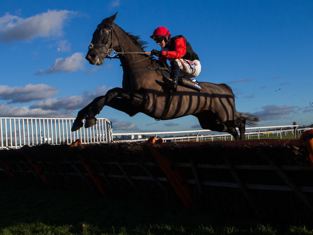 Plans fluid for facile Kelso winner Saphir Du Rheu