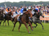 Winter Derby at Lingfield a 'good starting point' for classy Mutakayyef