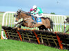 Tin Soldier battles to Michael Purcell success at Thurles