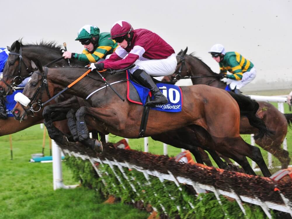 Bryan Cooper looking forward to Triumph Hurdle with Dinaria Des Obeaux