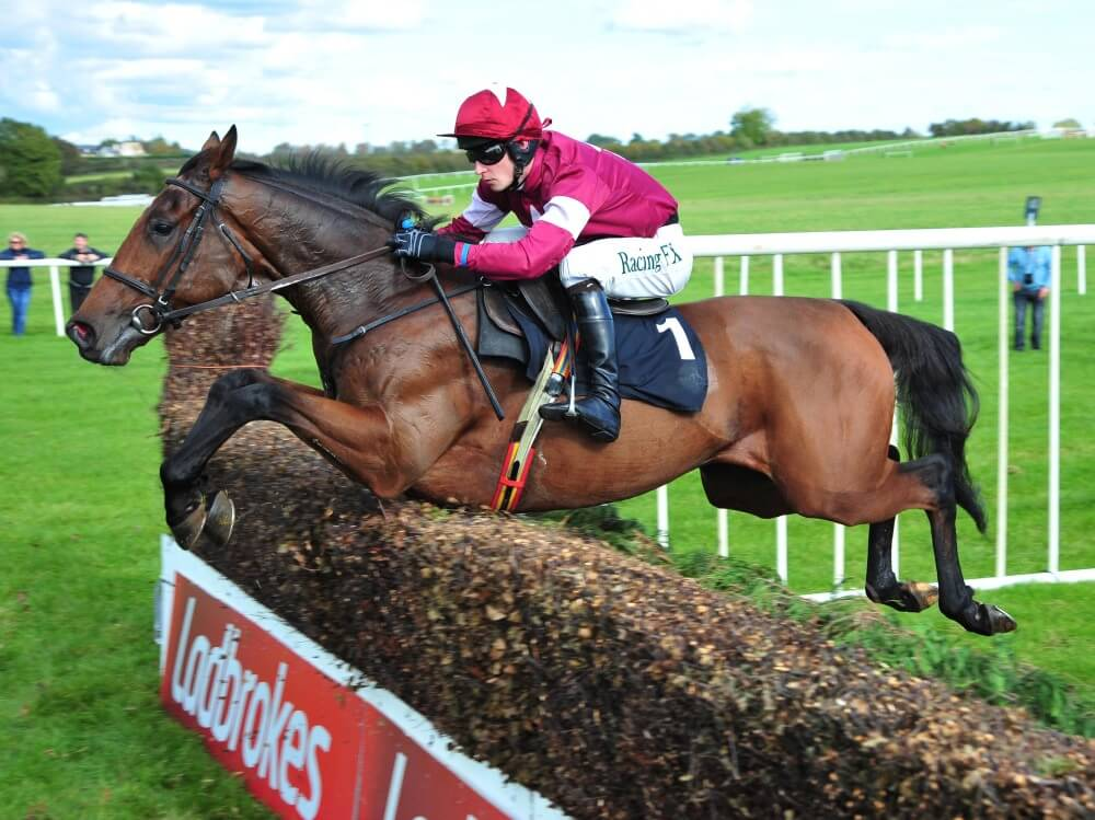 Alpha Des Obeaux primed for Cheltenham assignment