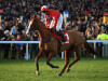 Sire De Grugy to miss Cheltenham but Traffic Fluide in line for Douvan clash