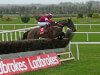 Empire Of Dirt set to stick to the Ryanair Chase over Gold Cup at Cheltenham