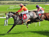 Labaik put his best foot forward to rule Supreme at Cheltenham