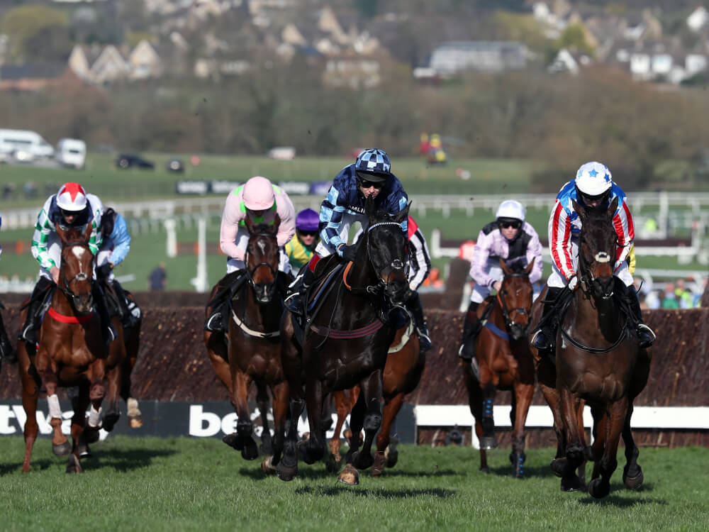 Punters left reeling after day two of Cheltenham