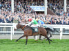 Fayonagh flies home for five-star Gordon Elliott