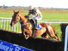 Confidence high in Yorkhill camp ahead of Cheltenham fencing test