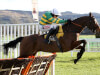 Defi Du Seuil primed to continue winning streak in Triumph Hurdle