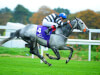Ruth Carr issues Kempton poser to new recruit Sovereign Debt