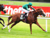 Roger Charlton has Decorated Knight ready for Meydan Turf war