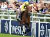 Roger Varian looking to Coronation Cup for Postponed redemption