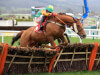 Neil King says Punchestown is 'Plan A' for Lil Rockerfeller