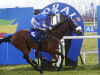 Brian Hughes booked for Vicente Grand National ride