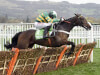 Buveur D'Air seeking big Cheltenham-Aintree double