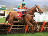 Neil King turns to Richard Johnson as Lil Rockerfeller aims to go one better