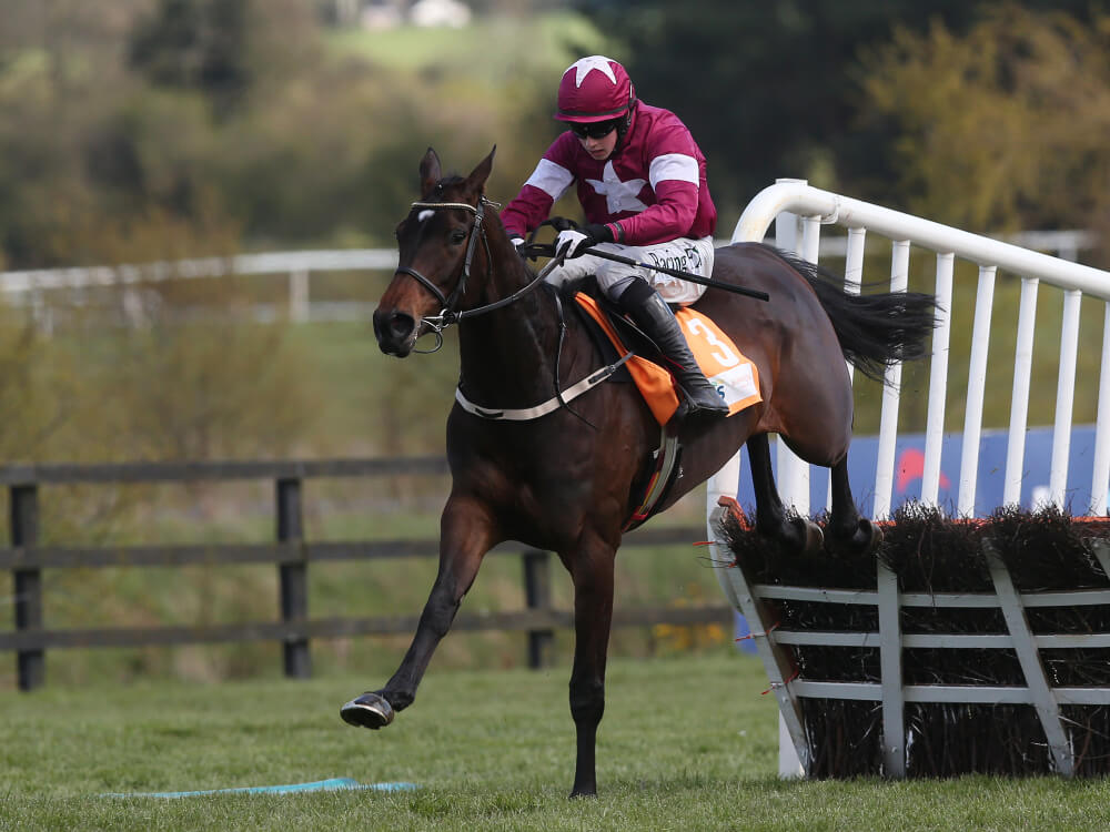 Apple's Jade faces four-strong Willie Mullins challenge at Punchestown