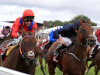 Veteran sprinter Take Cover ready for Temple reappearance