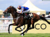 Order Of St George flies the Ballydoyle flag in Saval Bet at Leopardstown