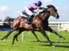 Murillo books Royal Ascot ticket with impressive Tipperary success