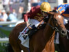 Simple Verse on course for Gold run at Royal Ascot
