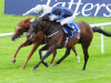 Ballydoyle colt gets home in Gallinule