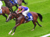 Aidan O'Brien considering Ascot targets with Clemmie and Snowflakes