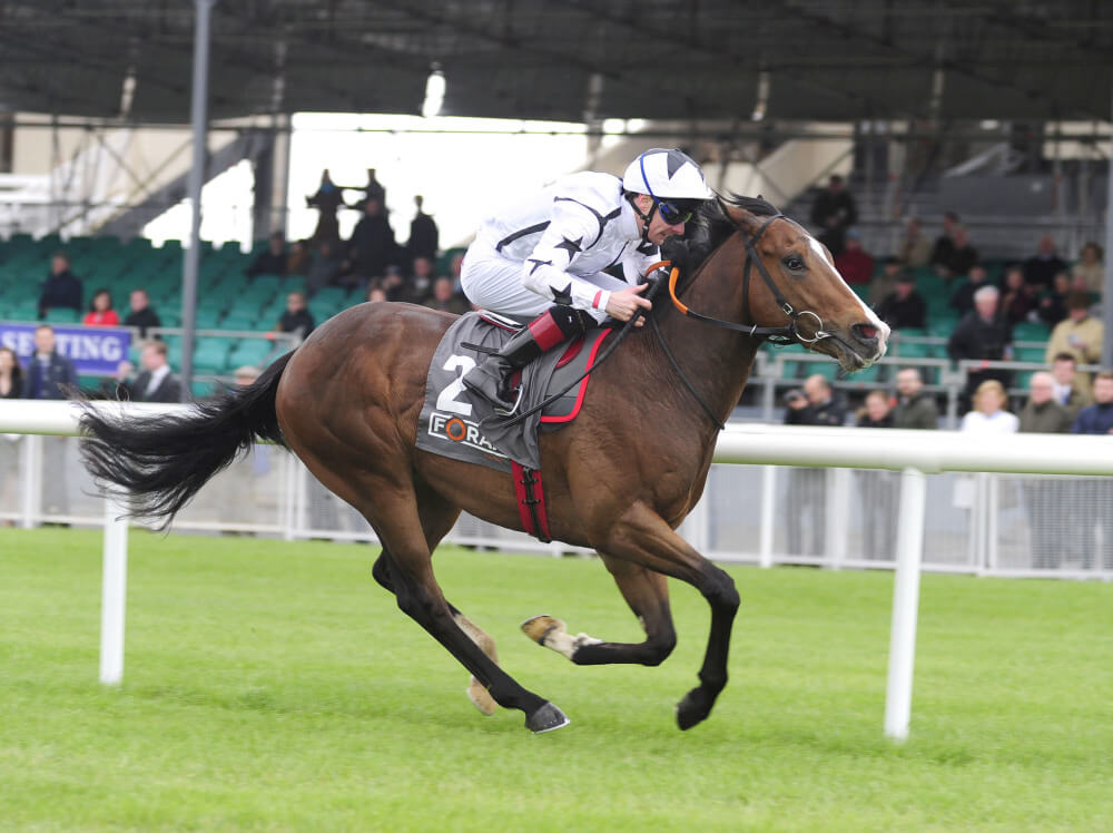 Connections eye up Royal Ascot trip with Beckford