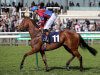 Hugo Palmer targeting Goodwood glory with Unforgetable Filly