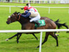 John Oxx pencils in unbeaten Naughty Or Nice for Ribblesdale Stakes