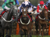 Ian Williams could target Royal Ascot prize with London