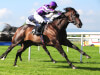 Aidan O'Brien reveals plans for Royal Ascot young guns