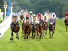 Order Of St George heads 18 still in the mix for Gold Cup glory