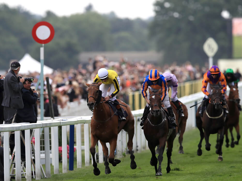 Big Orange proves sweet for bookmakers in Gold Cup
