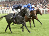 Caravaggio could be asked to conquer Everest in late-season adventure