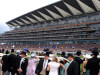 September marches to Chesham glory at Royal Ascot